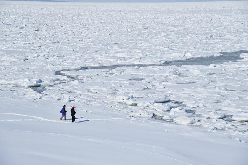 冬のオホーツク海と知床連山の絶景・海岸コース